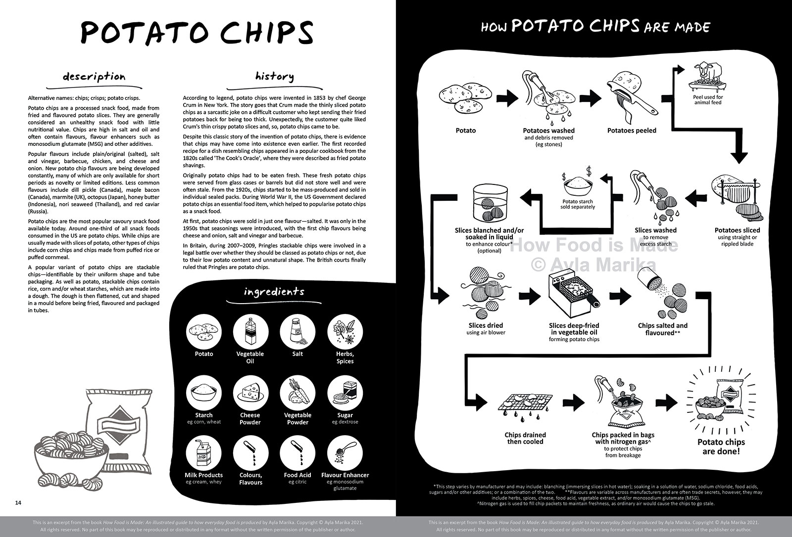 potato chips food infographic