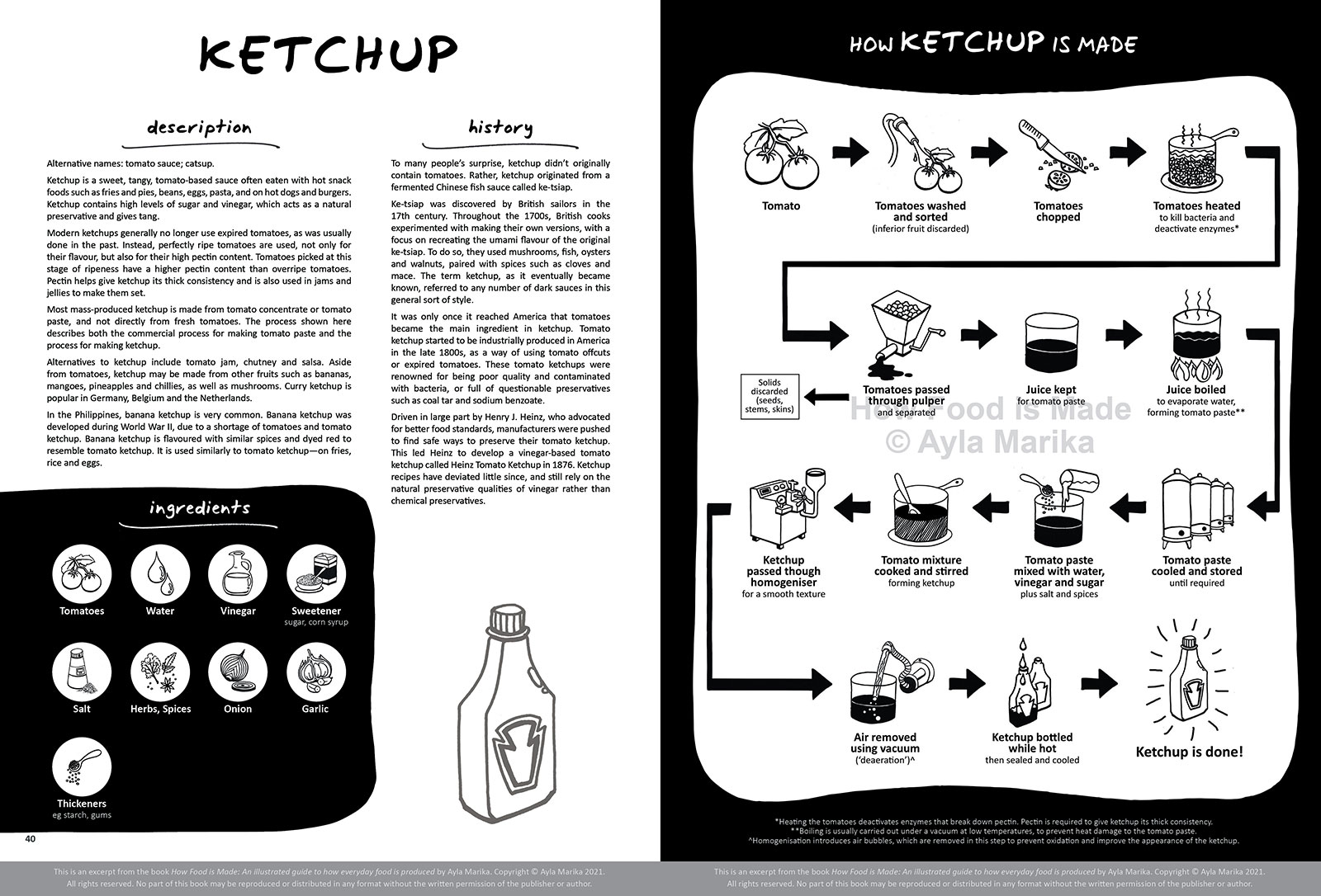ketchup food infographic