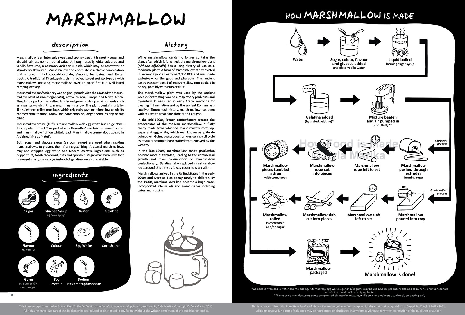 marshmallow food infographic