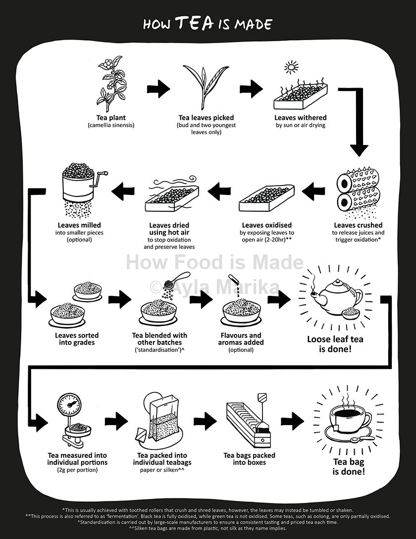 what is in black tea infographic