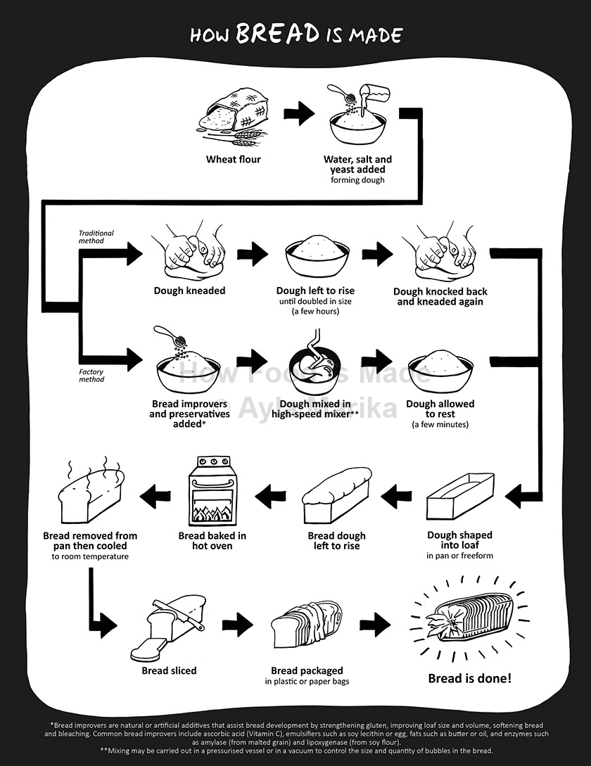 infographic how bread is made